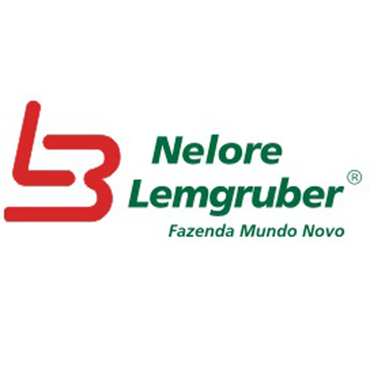 Nelore Lemgruber - Fazenda Mundo Novo